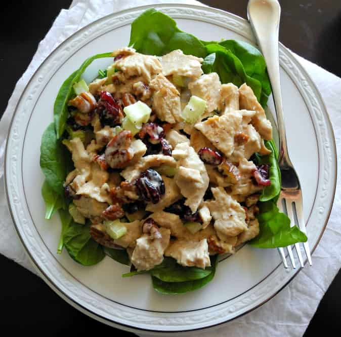 Turkey cranberry salad with pecans - great for leftover turkey! Paleo & whole30