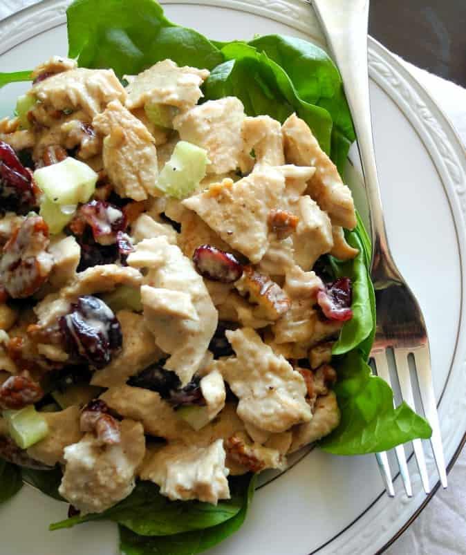 Turkey salad with cranberries and pecans plus paleo mayo