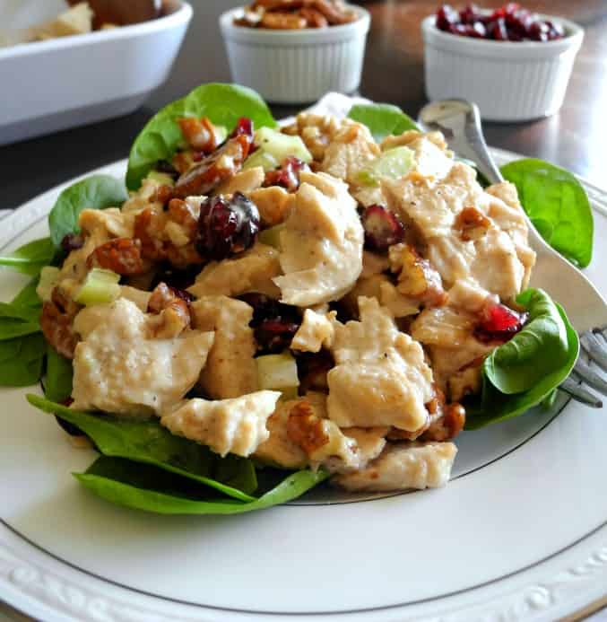 turkey salad with cranberries and pecans - paleo, whole30, great for leftover chicken or turkey!