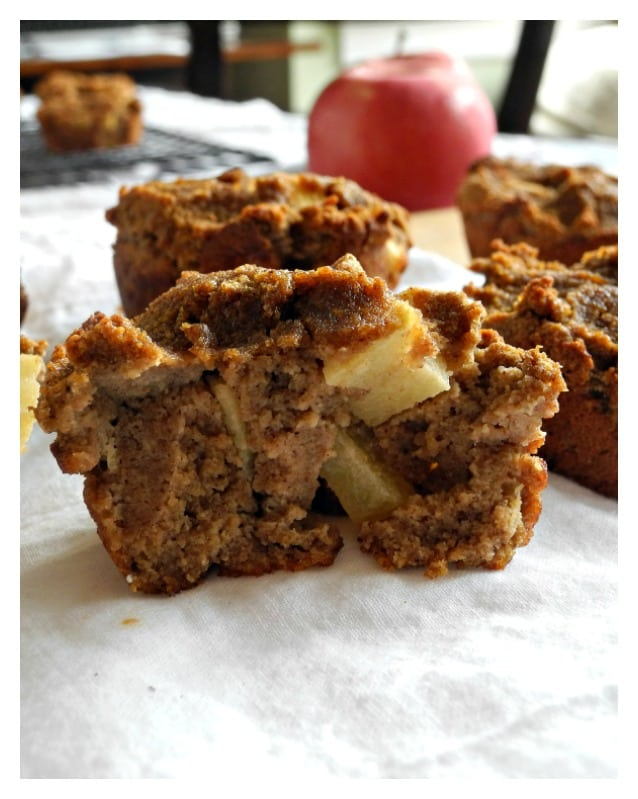 Paleo Apple Pie Breakfast Bites