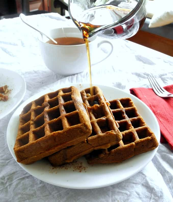 Paleo Gingerbread Waffles #dairyfree #glutenfree #grainfree