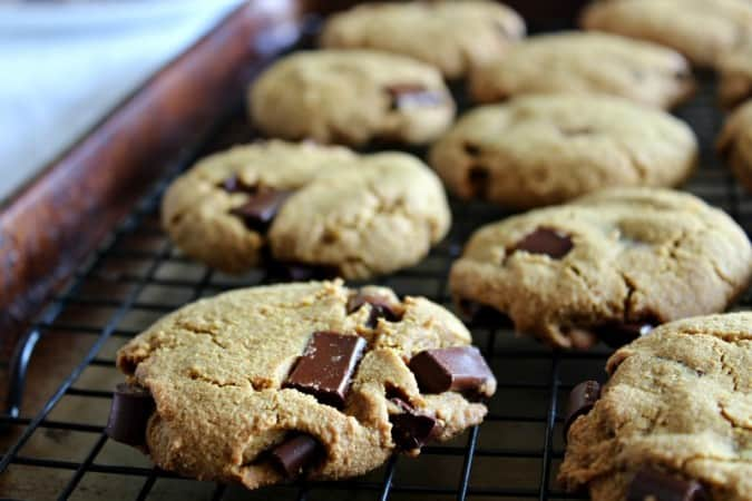 paleo chocolate chunk cookies cooling