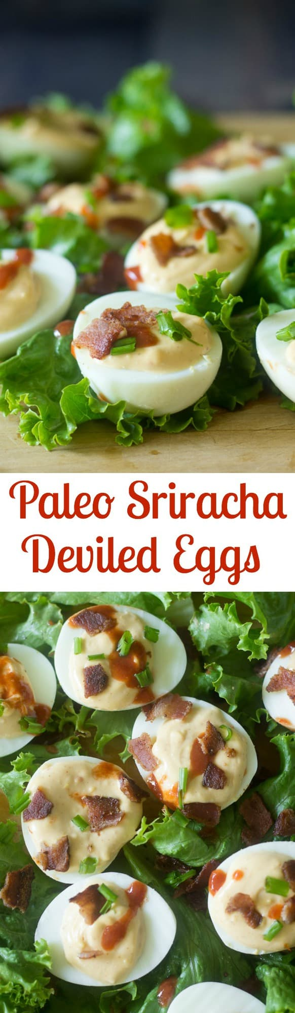 Spicy deviled eggs with bacon and easy Paleo sriracha mayo! Grain free, soy free, Paleo, great appetizer or snack made with healthy whole ingredients!