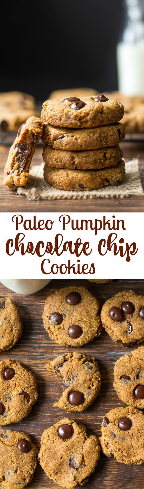Soft and Chewy Paleo Pumpkin Chocolate Chip Cookies with a hint of warm cinnamon and pumpkin pie spice. Gluten free, grain free, dairy free, Paleo.