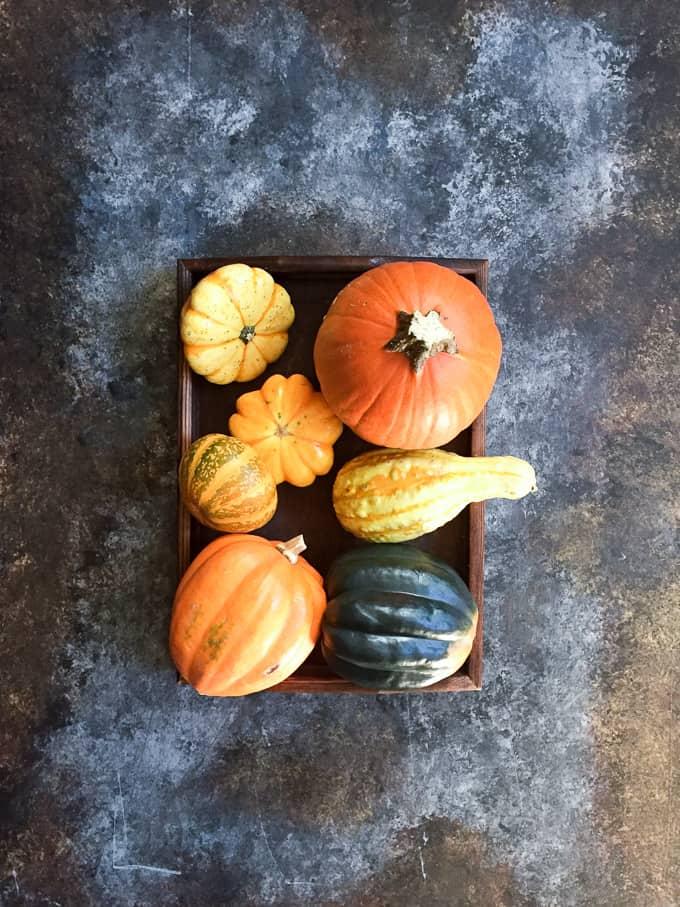 pumpkin-fudge-7