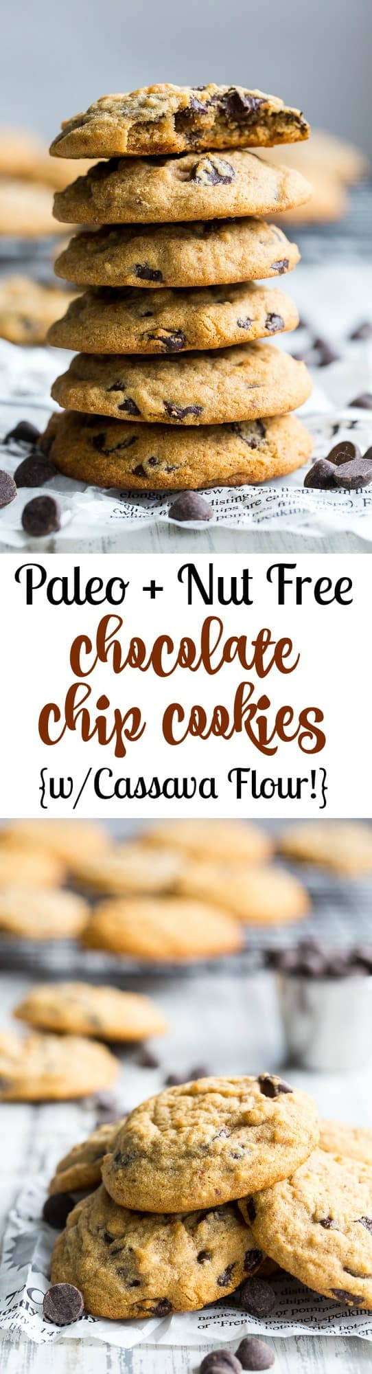 These soft chewy paleo chocolate chip cookies are made with cassava flour, making them nut free PLUS grain free and gluten free.  The cassava flour makes the flavor very similar to traditional chocolate chip cookies, so you know everyone will love them!