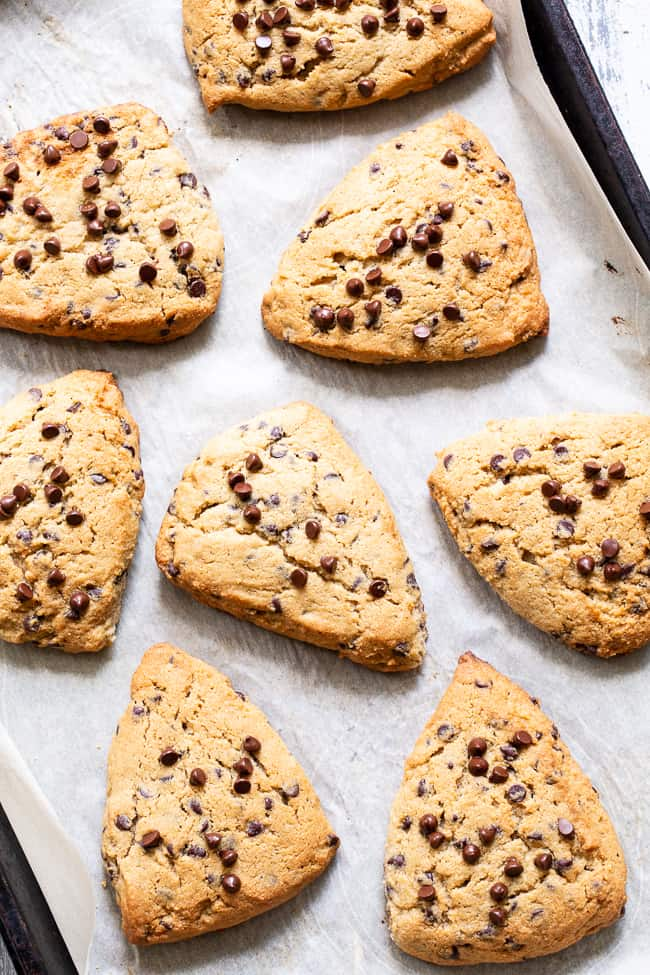 These paleo chocolate chip scones are flaky, soft and packed with mini chocolate chips!  They're perfect for brunch, dessert, and anytime you need something special and sweet.  Gluten free, grain free, with dairy-free options. Paleo dessert. Paleo baking. Paleo brunch. Paleo treat.