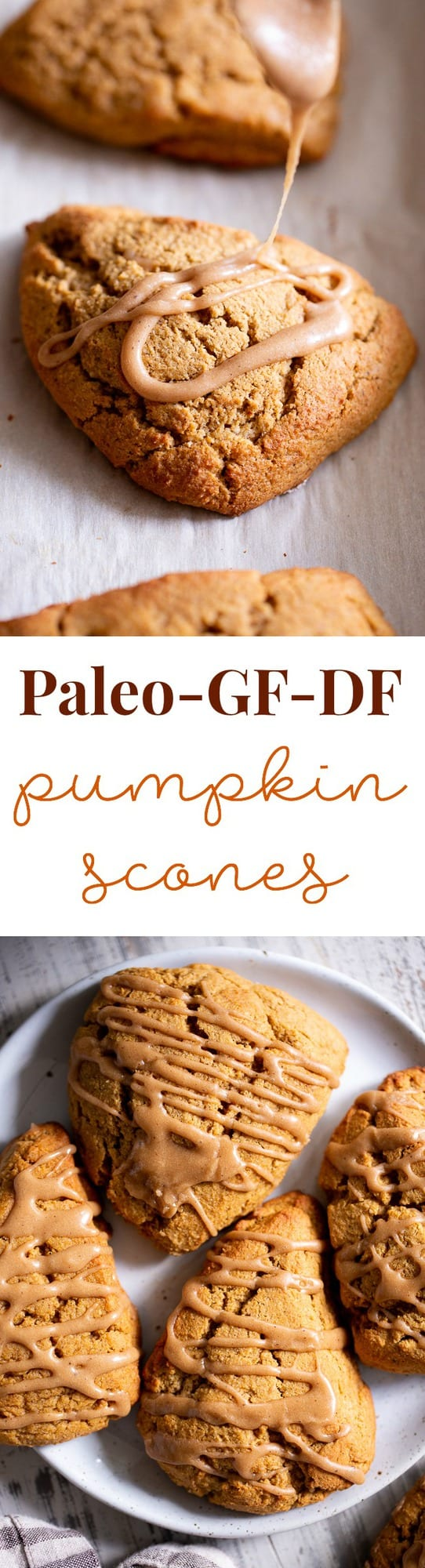 These paleo pumpkin scones are tender and full of pumpkin spice flavor!  Serve them warm topped with a pumpkin spice drizzle for a special (healthier!) treat this fall.  Gluten free and paleo with dairy-free options.  Paleo baking. Paleo desserts. Paleo scones. Paleo Pumpkin recipes.