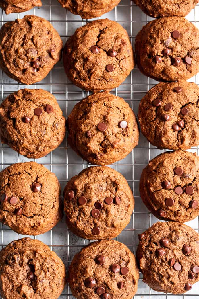 These Gingerbread Chocolate Chip Cookies are packed with sweet molasses, spices, and chocolate.  They're made with cassava flour so they're gluten and grain free, paleo, and nut free as well.  These chocolate chip gingerbread cookies are perfect for healthy holiday baking or whenever you crave a sweet treat.